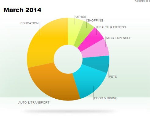March expenses by categories