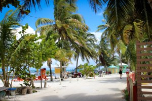 "Welcome to Main Street on Caye Caulker where to motto is ""Go Slow!"""