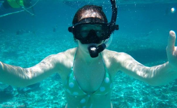 MeSnorkeling