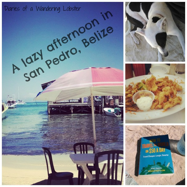 L to R: Lick's Beachfront Cafe, Patch the dog!, Conch Fritters, a perfect beach read - How to Travel the World on $50 a Day